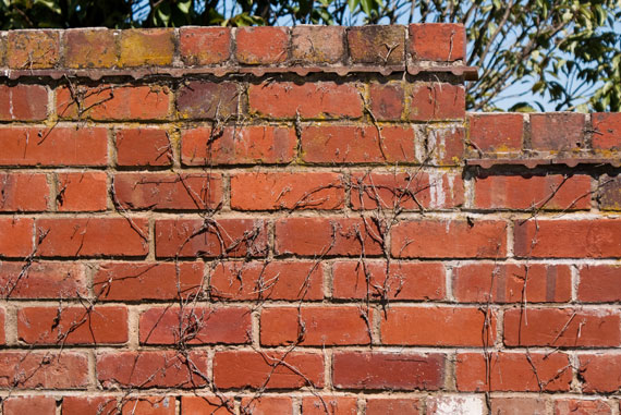 Brick-Wall-by-Pleasence-570